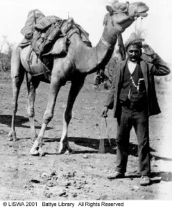 Fazal Din and camel, 1904