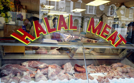 Halal, is it meat you're looking for?